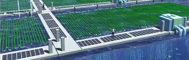 化工水处理多少钱